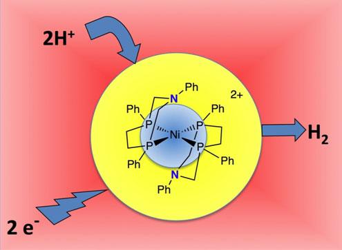 PNNL Molecular Catalyst
