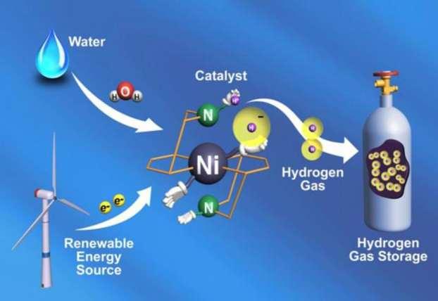 Hydrogenase Fuel Cell Design